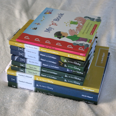 All About Reading is a great open-and-go curriculum for new or busy homeschoolers. I added a series of books about each letters sound to give my pre-readers more practice hearing and seeing the sounds.