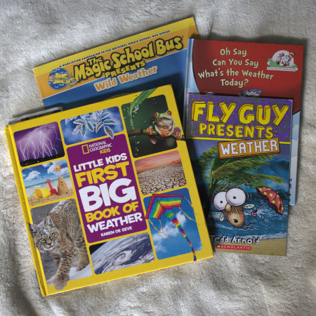 I'm winging it for science. Lucky for me, there are a lot of accurate, colorful science books for kids.